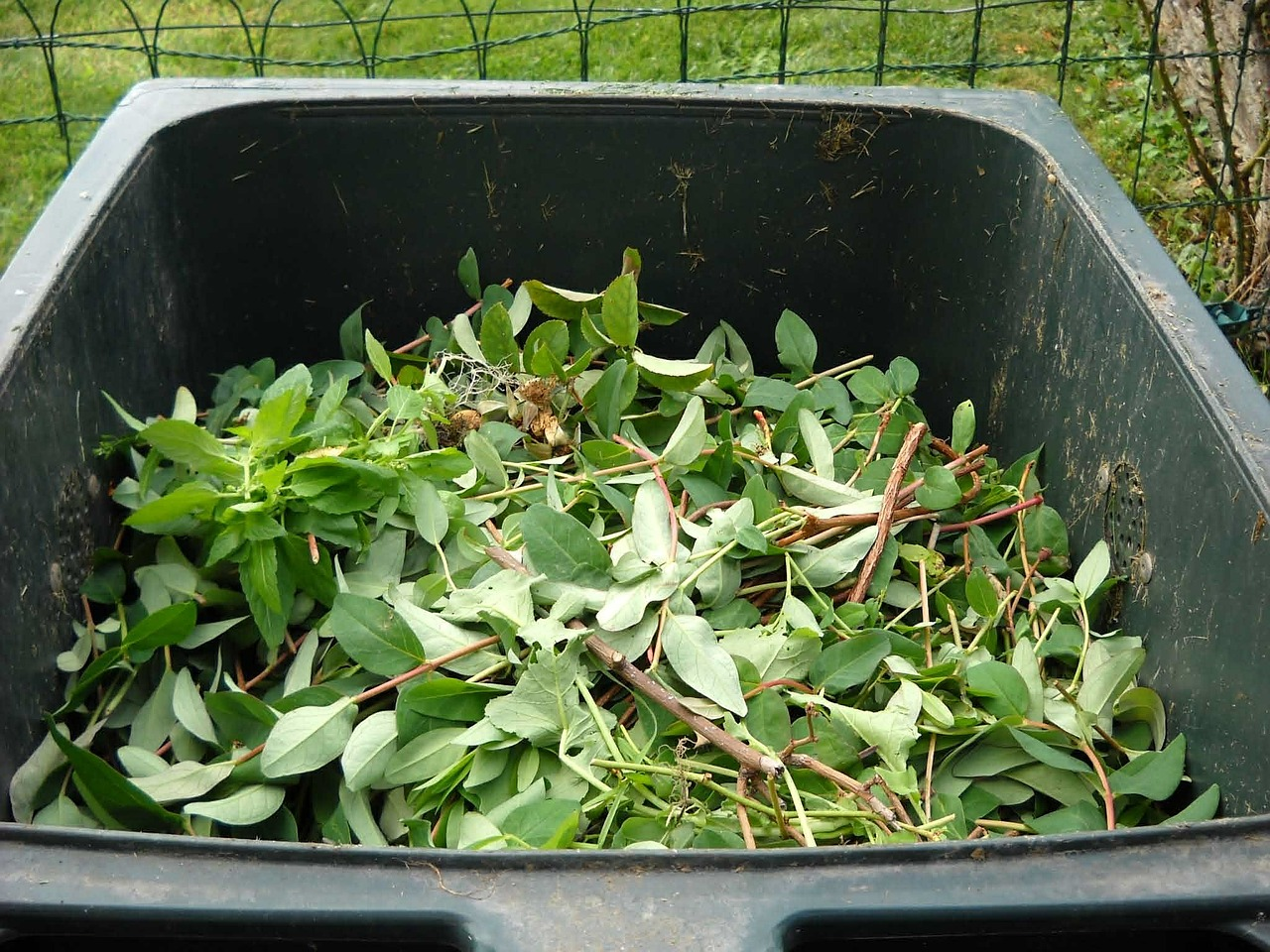 How to Make Compost Tea From Kitchen Waste