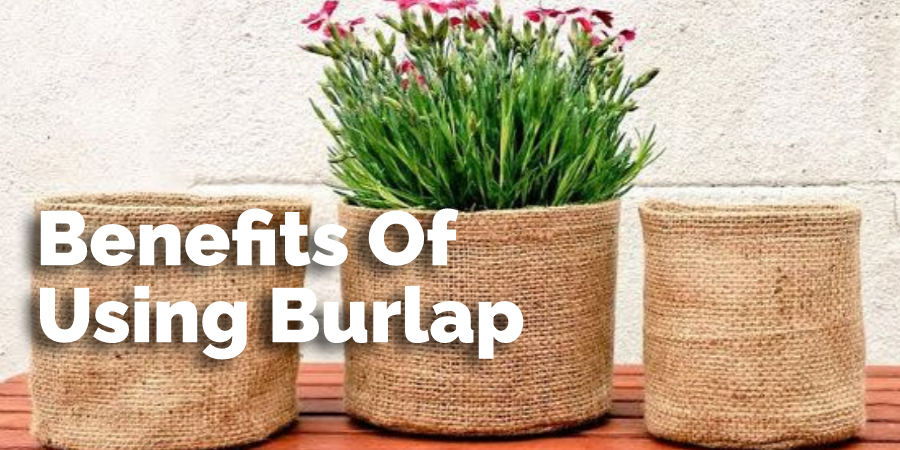 Benefits Of Using Burlap