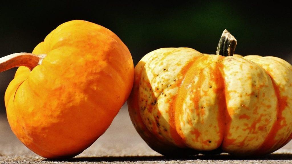 How to Shade a Pumpkin
