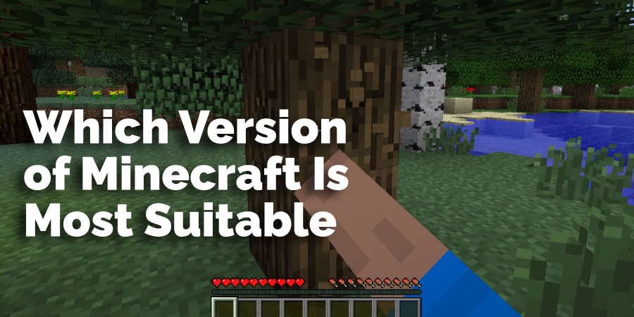 Which Version of Minecraft Is Most Suitable