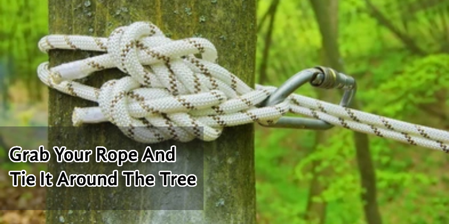 Grab Your Rope And Tie It Around The Tree