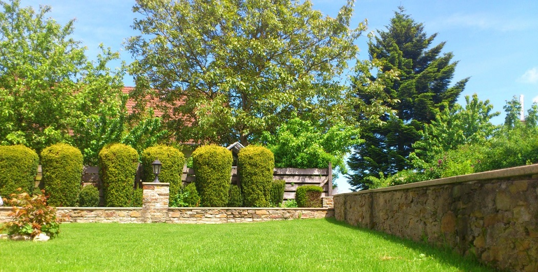 how to separate front yard from neighbors