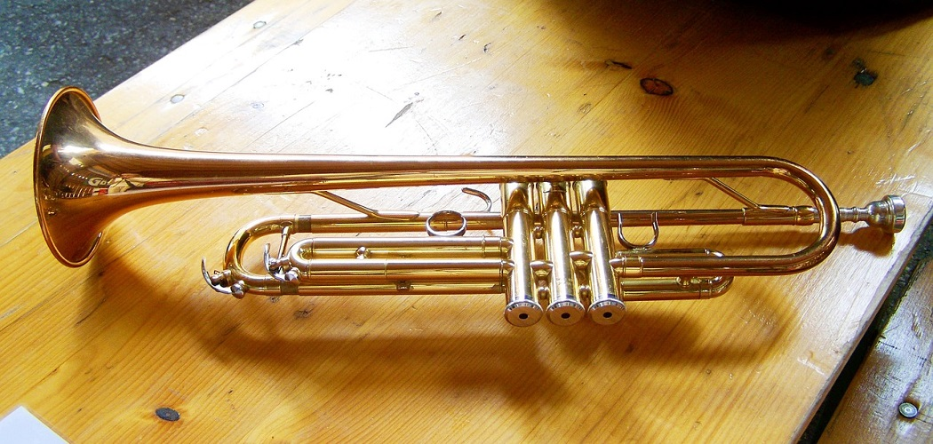 How to Make a Homemade Trumpet with Valves 1