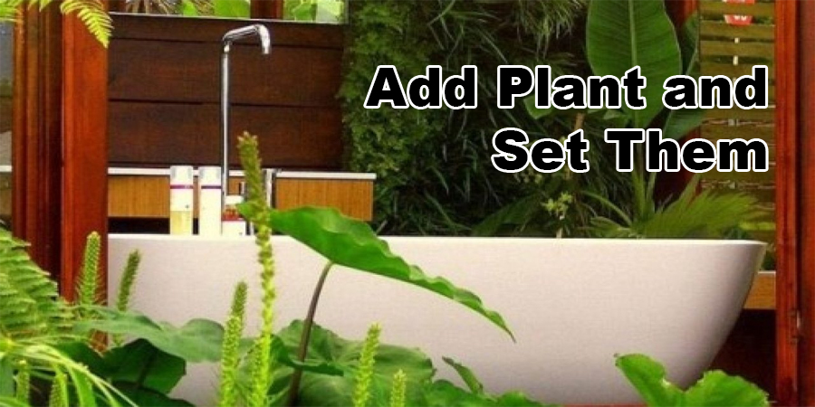 Add Plant and Set Them