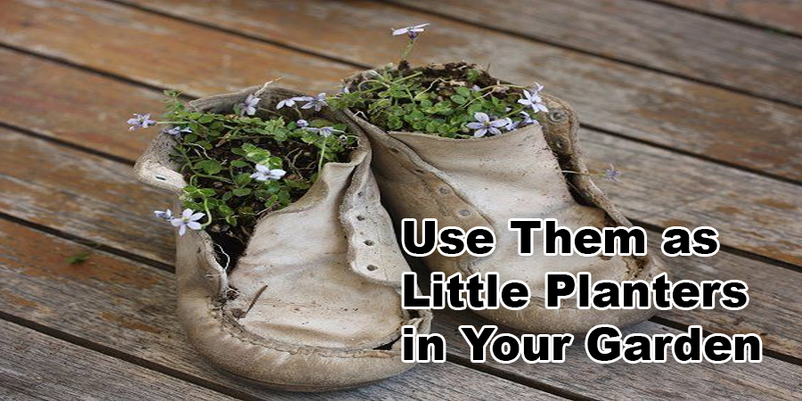 Use Them as Little Planters in Your Garden