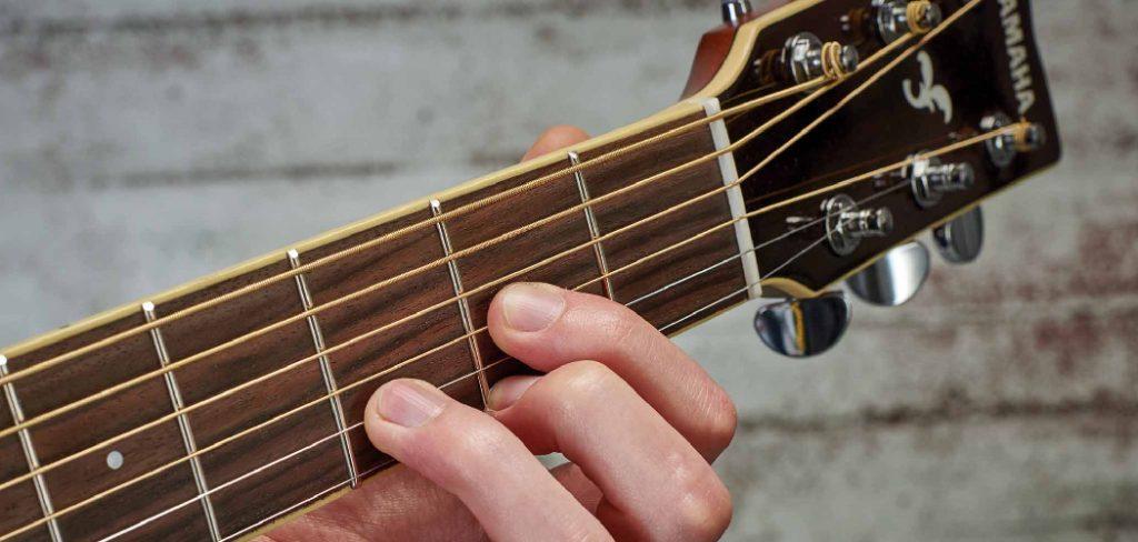 Frets of Guitar