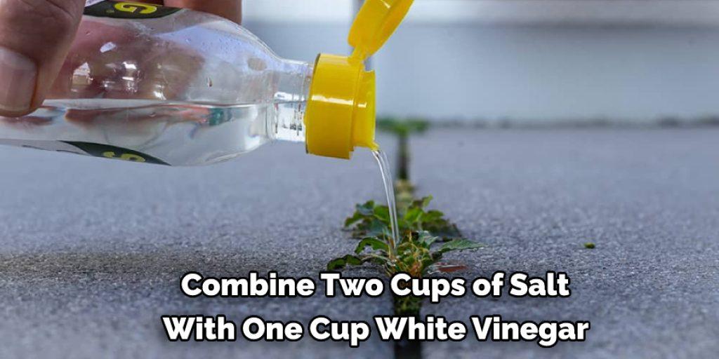 Applying a mixture of salt and vinegar