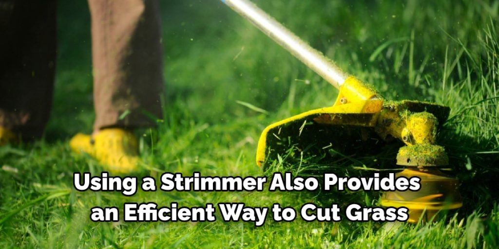 10 Ways on How to Cut Grass Without a Lawn Mower