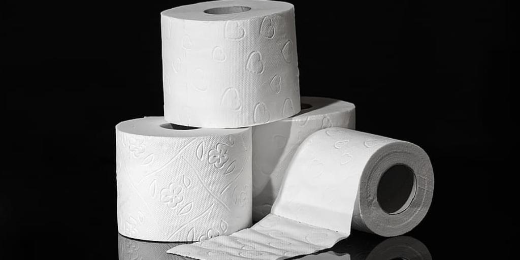 Does Bleach Dissolve Toilet Paper