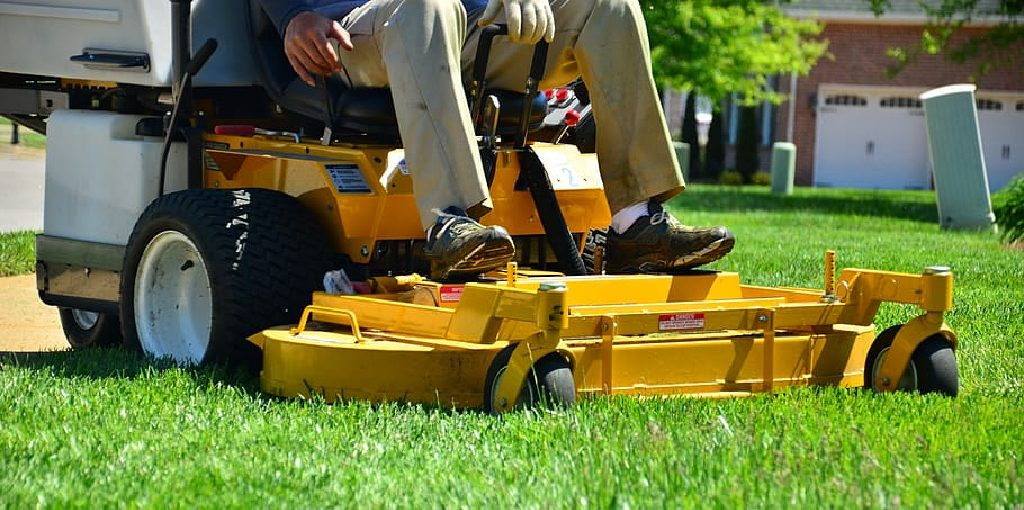 How to Cut Grass Without a Lawn Mower