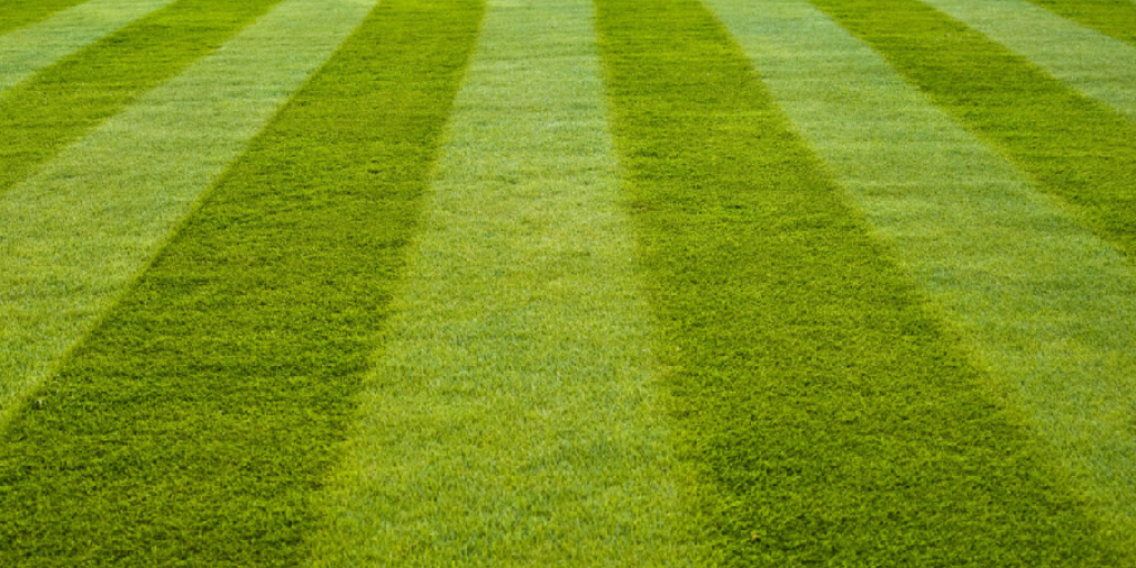 How to Smooth Out Your Lawn