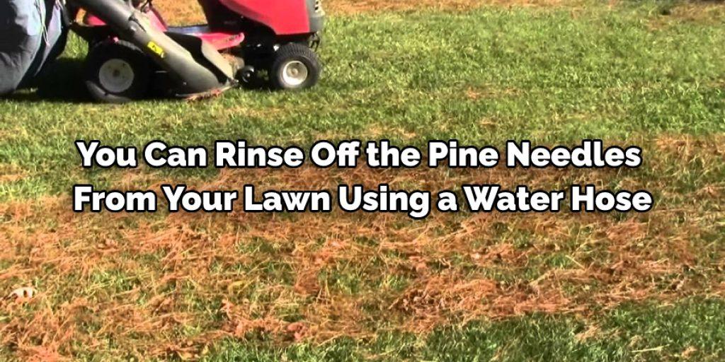 Using Water Hose foe Lawn