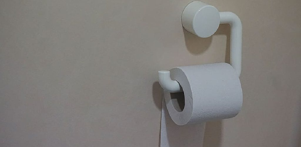 How to Remove Toilet Paper Holder