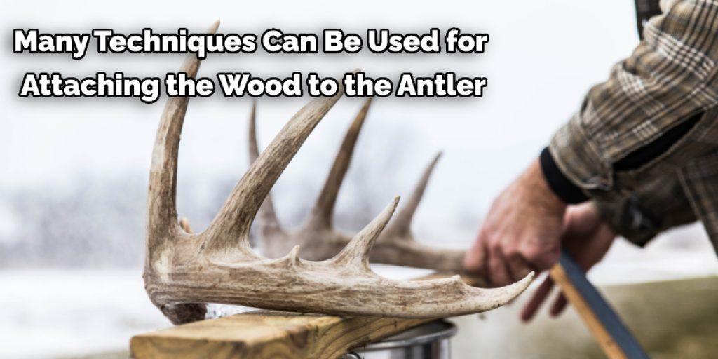 Procedure to Attach Deer Antlers Together