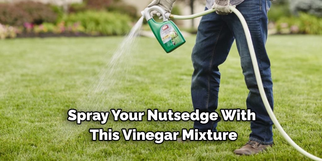 Step on How to Get Rid of Nutsedge Naturally Without Using Chemicals