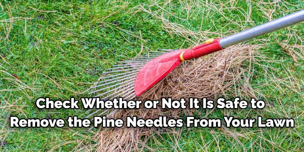 Considering Before Removing Pine Needles