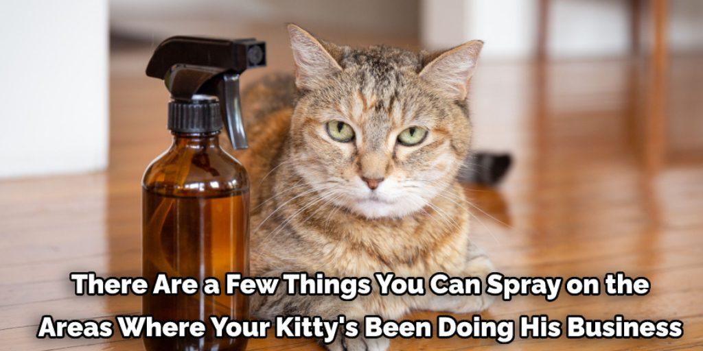 Try cat repellent sprays