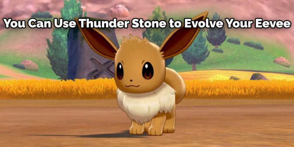 Using Thunder Stone to Evolve Eevee