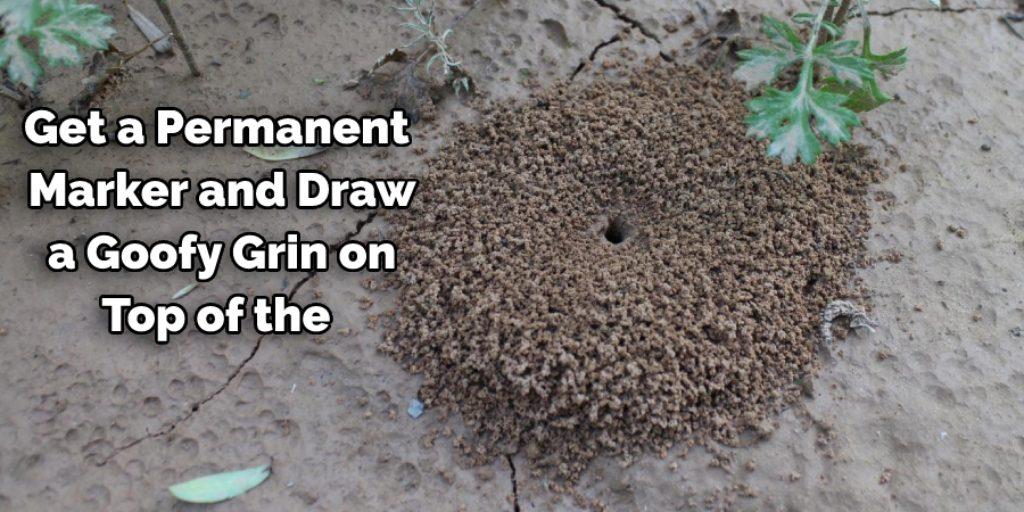 Using a Goofy Grin on an Ant Hill