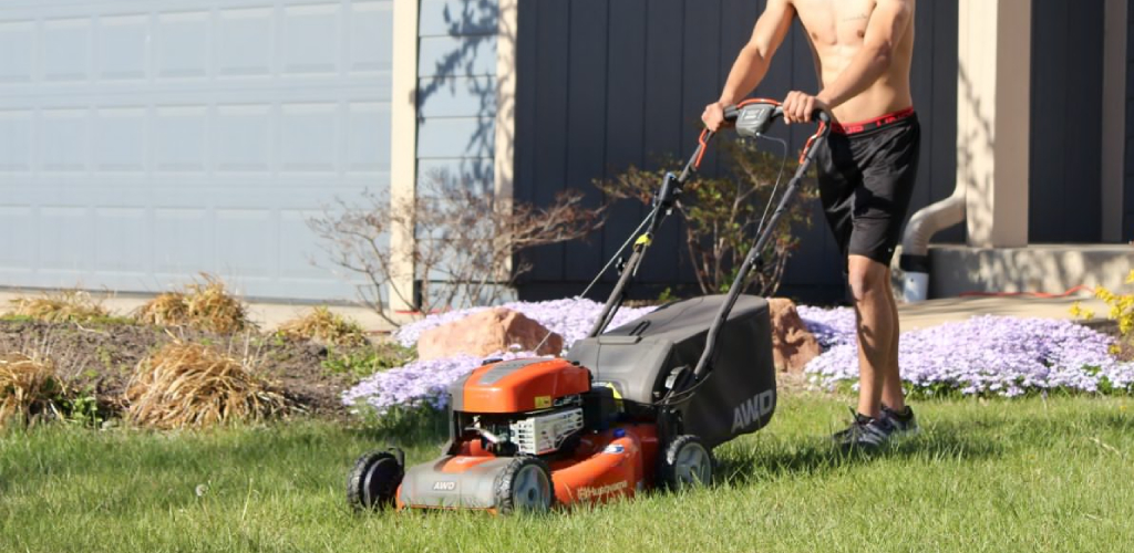 How Often Should I Mow the Lawn