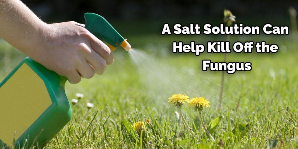 Using Salt Solution