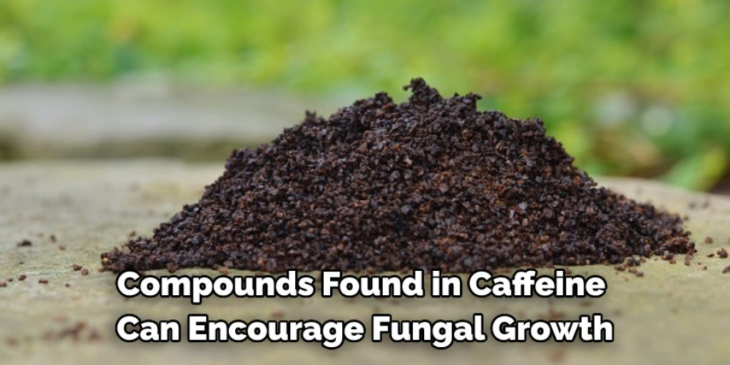 Compounds found in caffeine can encourage fungal growth